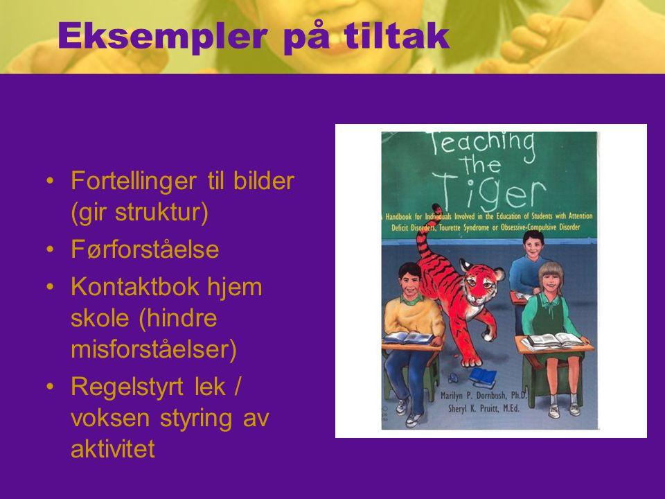 Eksempler på tiltak Fortellinger til bilder (gir struktur) Førforståelse Kontaktbok hjem skole (hindre misforståelser) Regelstyrt lek / voksen styring av aktivitet