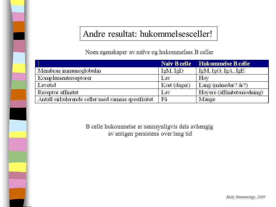 Kuby'Immunology, 2000 Andre resultat: hukommelsesceller.