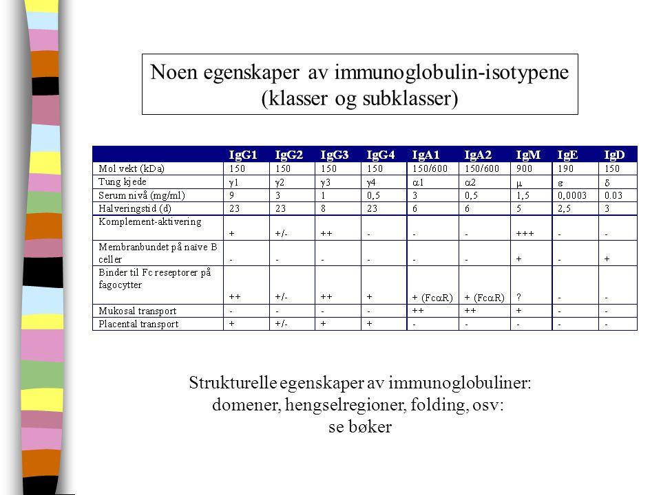 Noen egenskaper av immunoglobulin-isotypene (klasser og subklasser) Strukturelle egenskaper av immunoglobuliner: domener, hengselregioner, folding, osv: se bøker