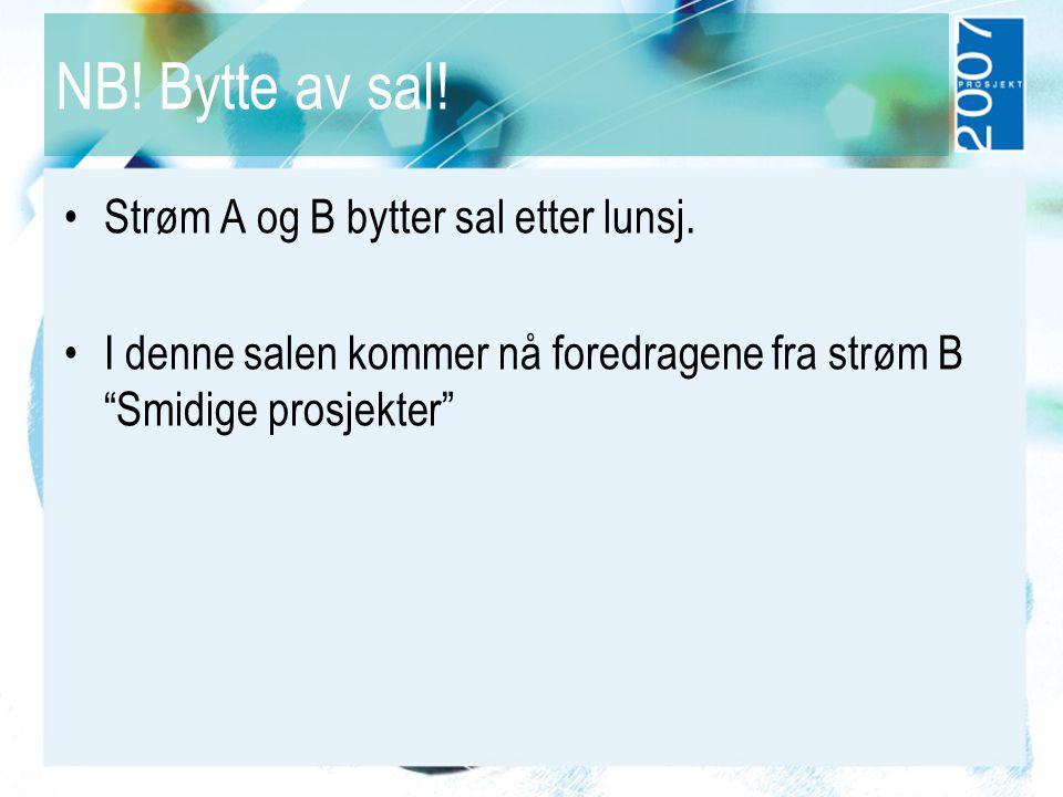 """NB! Bytte av sal! Strøm A og B bytter sal etter lunsj. I denne salen kommer nå foredragene fra strøm B """"Smidige prosjekter"""""""
