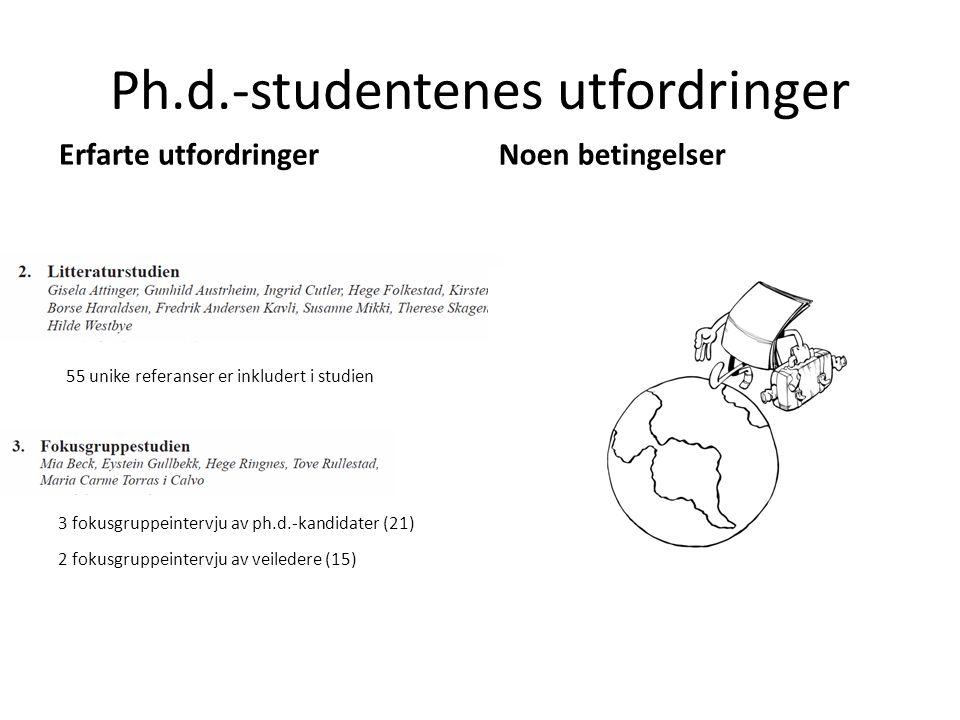 Ph.d.-studentenes utfordringer 3 fokusgruppeintervju av ph.d.-kandidater (21) 2 fokusgruppeintervju av veiledere (15) 55 unike referanser er inkludert i studien Erfarte utfordringerNoen betingelser