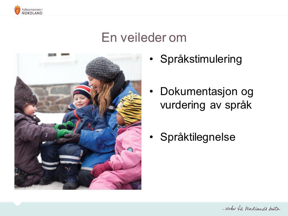 Språkstimulering Barn trenger erfaring i å bruke språket De voksne skal møte barna på deres nivå og arena Arbeid med språk skal være en integrert del av barnehagehverdagen Arbeidet med språk må være systematisk Leken er en viktig arena for språk og språkutvikling Bøker kan åpne for lystbetonte møter med språk - det beste med en bok er ikke de tankene den inneholder, men de tankene den skaper Bøker kommuniserer på flere språk Arbeid med ord og begreper er en naturlig del av barnehagehverdagen