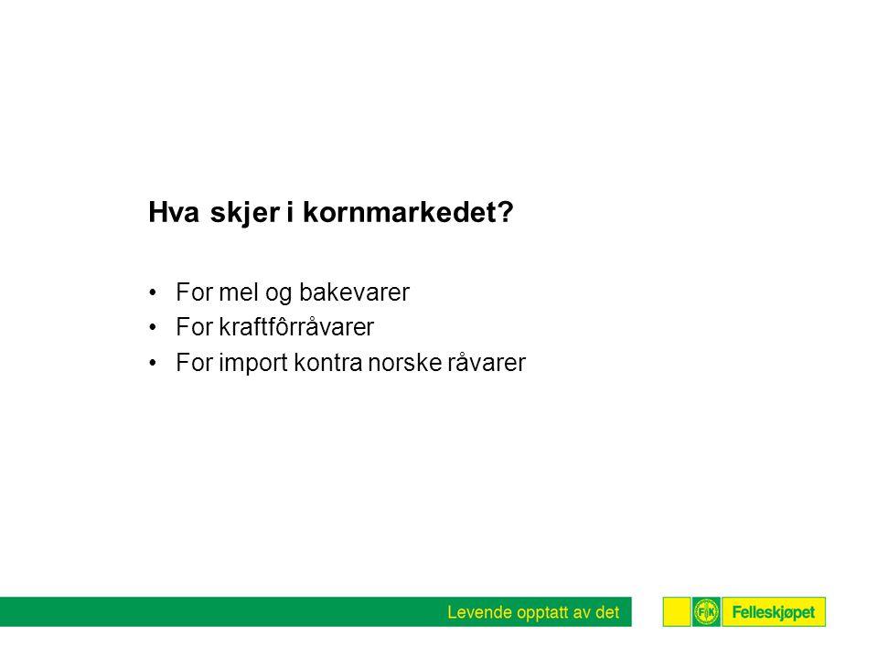 Hva skjer i kornmarkedet? For mel og bakevarer For kraftfôrråvarer For import kontra norske råvarer