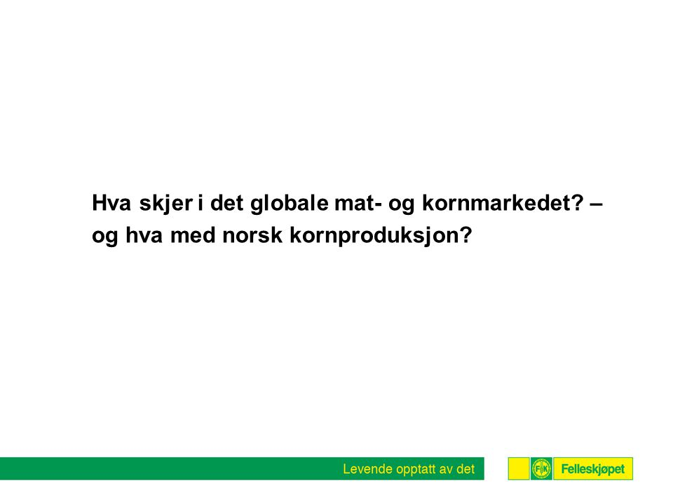 Totalt forbruk av matkorn inkl. RÅK- import 13