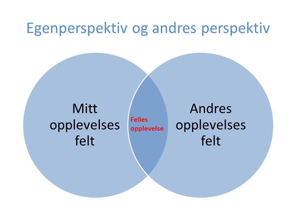 Egenperspektiv og andres perspektiv Mitt opplevelses felt Andres opplevelses felt Felles opplevelse