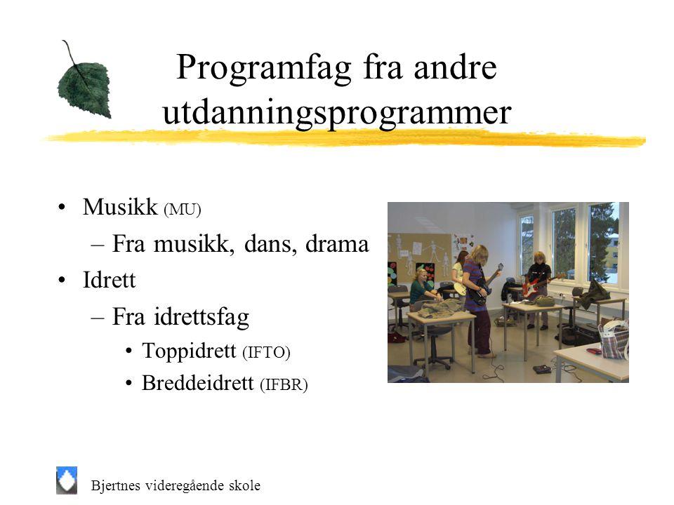 Bjertnes videregående skole Programfag fra andre utdanningsprogrammer Musikk (MU) –Fra musikk, dans, drama Idrett –Fra idrettsfag Toppidrett (IFTO) Breddeidrett (IFBR)