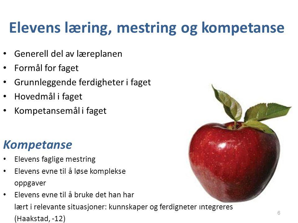 Elevens læring, mestring og kompetanse Generell del av læreplanen Formål for faget Grunnleggende ferdigheter i faget Hovedmål i faget Kompetansemål i
