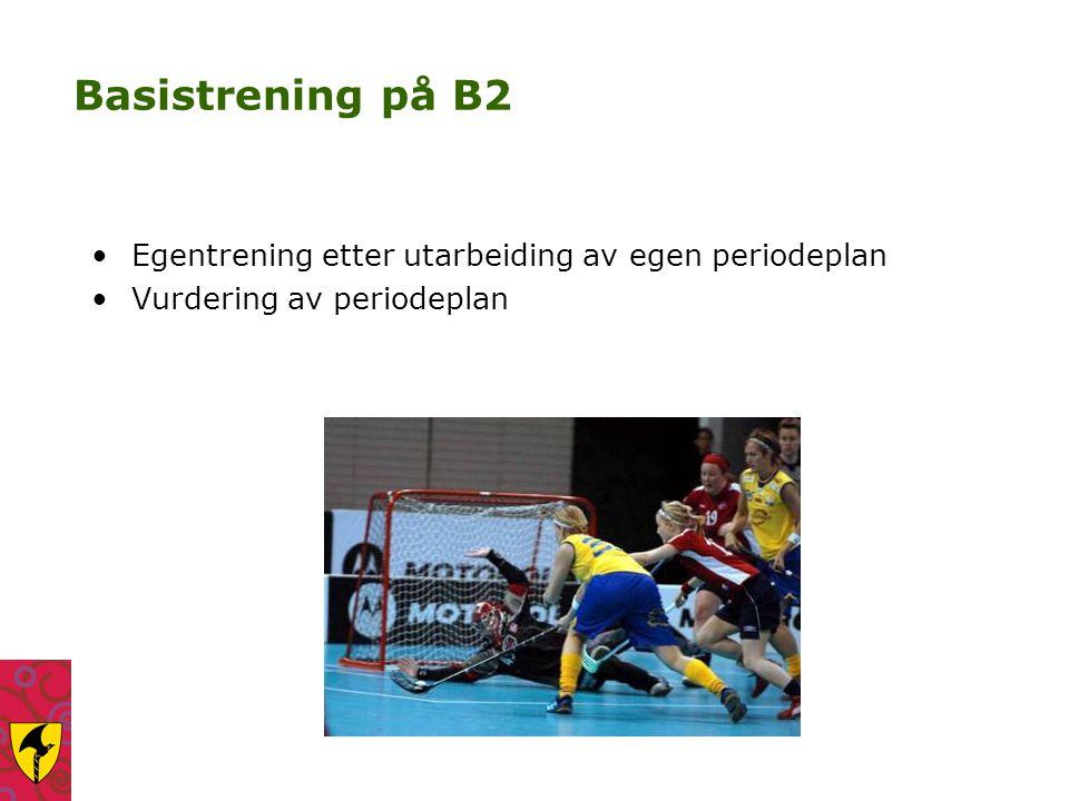 Basistrening på B2 Egentrening etter utarbeiding av egen periodeplan Vurdering av periodeplan