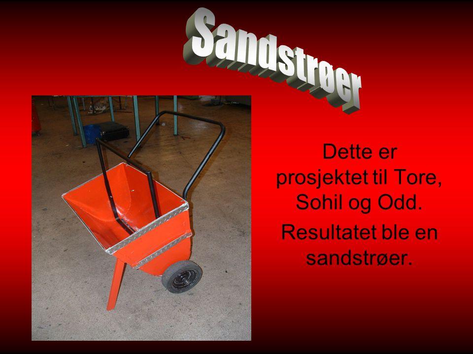 Dette er prosjektet til Tore, Sohil og Odd. Resultatet ble en sandstrøer.