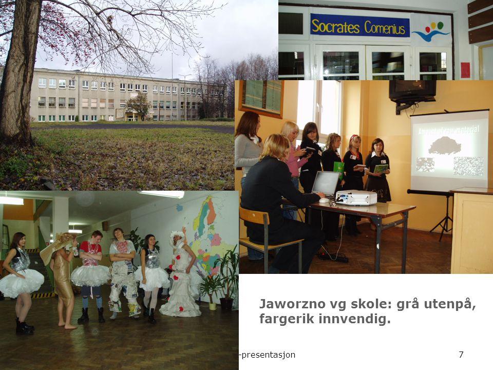 Comenius-presentasjon7 Jaworzno vg skole: grå utenpå, fargerik innvendig.