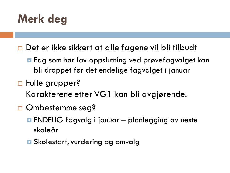 Elevpanel  For realfag: Silje Melbye  For samfunnsfag: Hedda Kvamsdal  For samf.fag m.