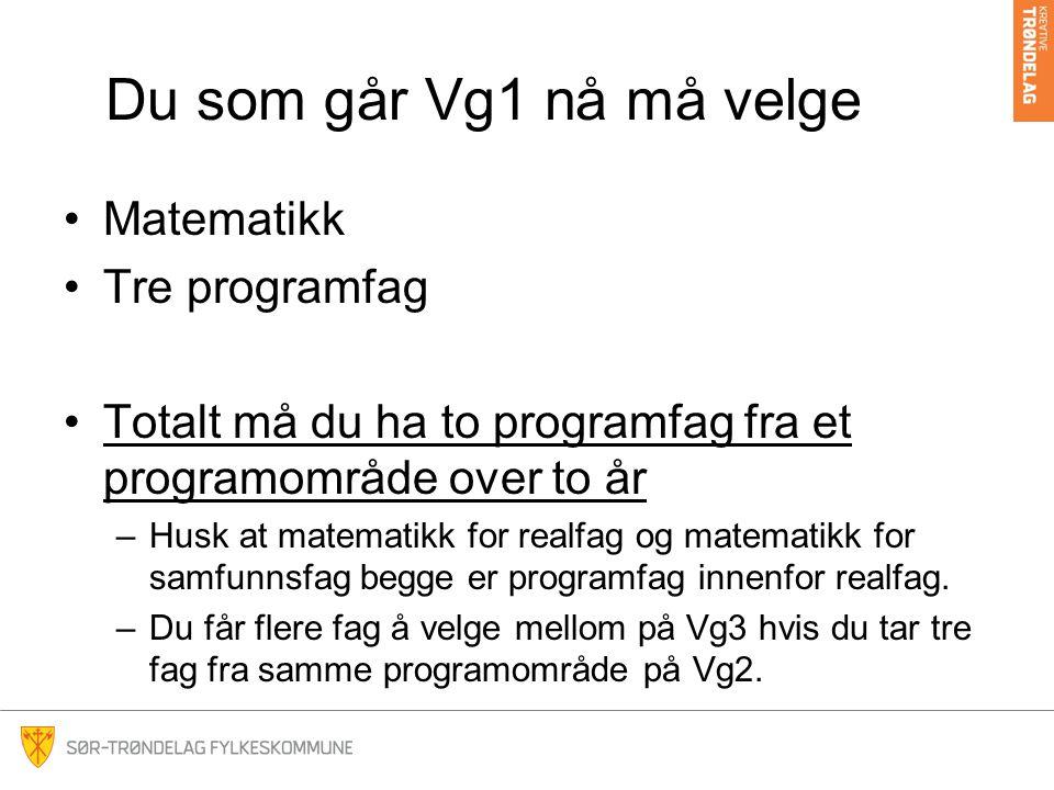 Du som går Vg1 nå må velge Matematikk Tre programfag Totalt må du ha to programfag fra et programområde over to år –Husk at matematikk for realfag og