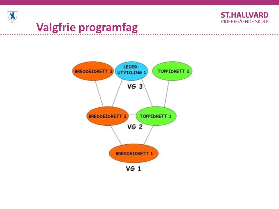 Valgfrie programfag