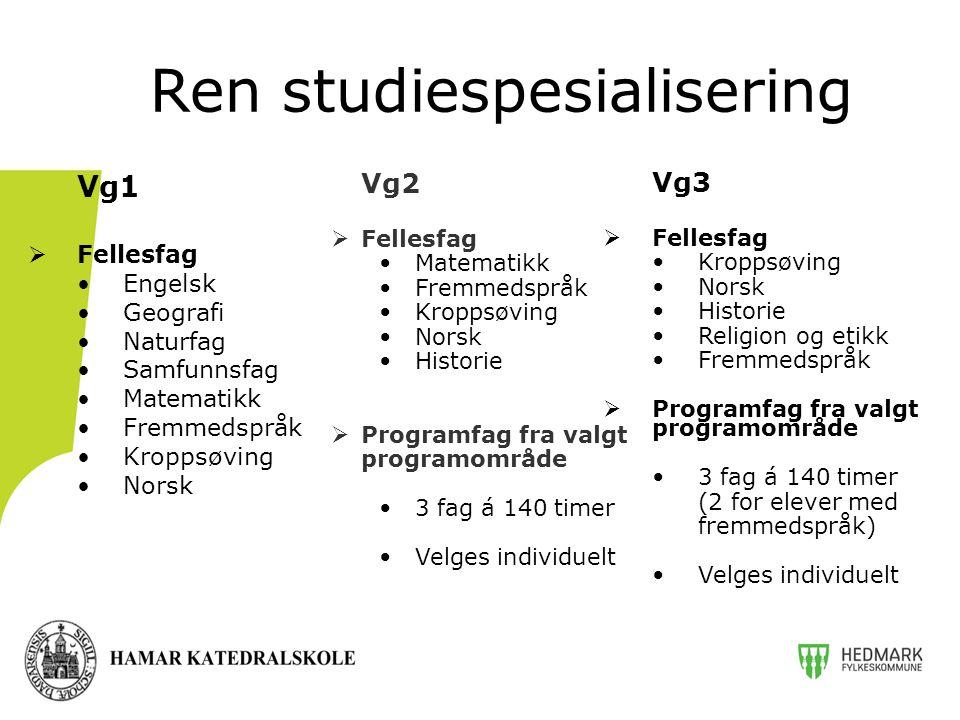 Vg2  Fellesfag Matematikk Fremmedspråk Kroppsøving Norsk Historie  Programfag fra valgt programområde 3 fag á 140 timer Velges individuelt Ren studi