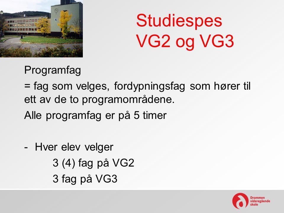 Studiespes VG2 og VG3 Programfag = fag som velges, fordypningsfag som hører til ett av de to programområdene. Alle programfag er på 5 timer -Hver elev