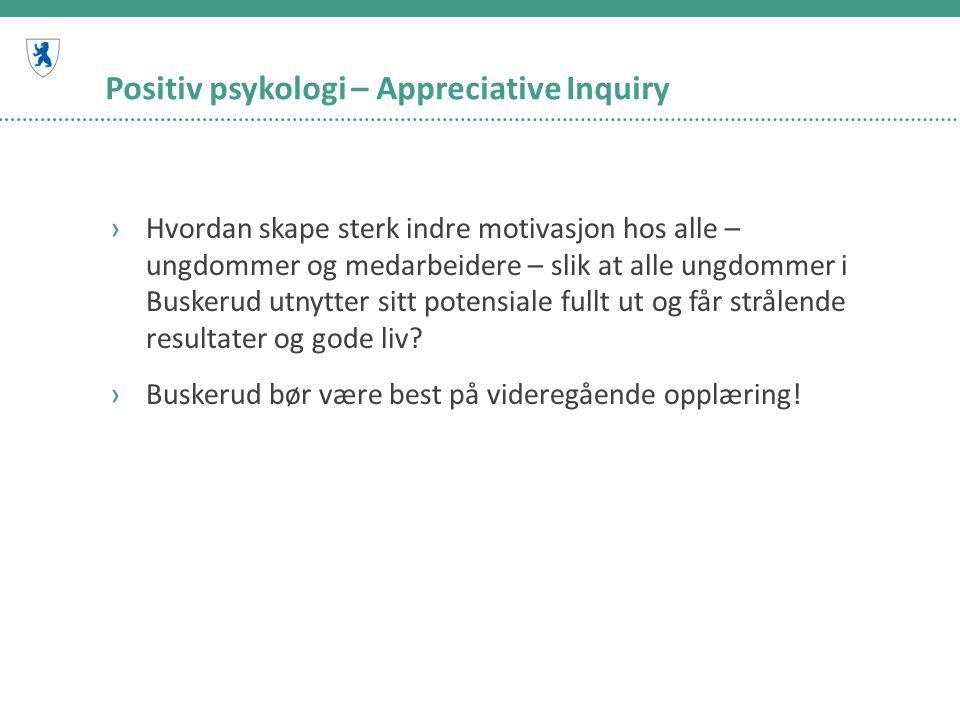 Positiv psykologi – Appreciative Inquiry ›Hvordan skape sterk indre motivasjon hos alle – ungdommer og medarbeidere – slik at alle ungdommer i Buskeru