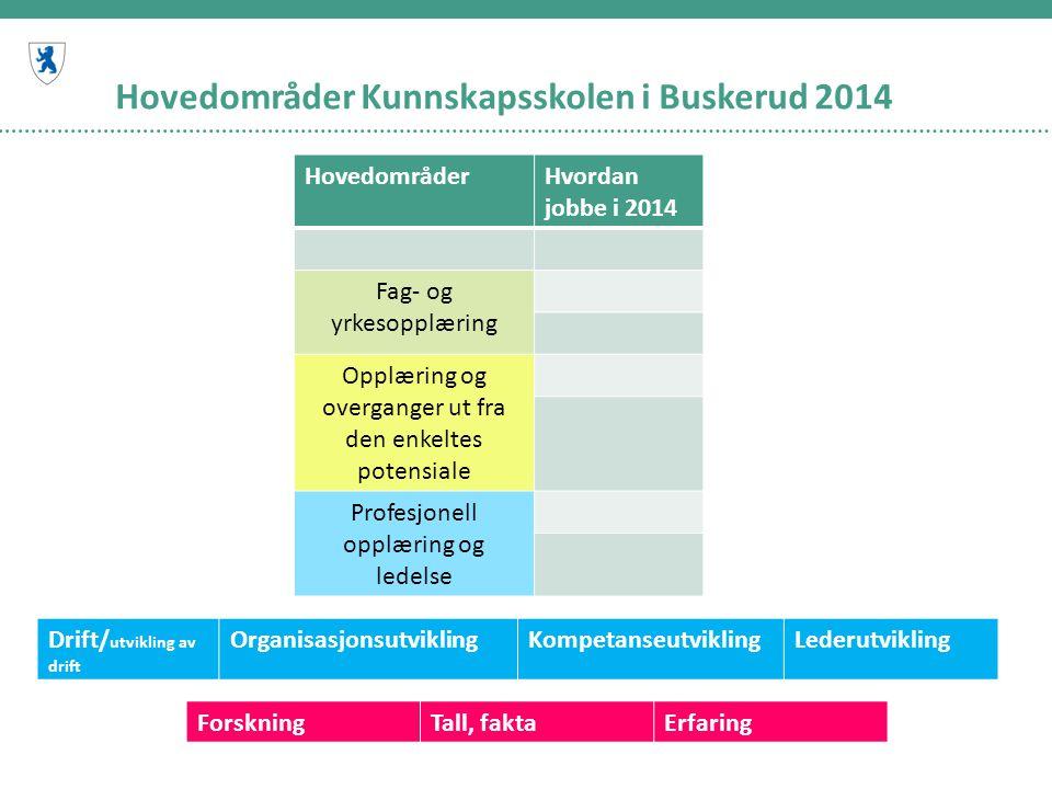 Hovedområder Kunnskapsskolen i Buskerud 2014 HovedområderHvordan jobbe i 2014 Fag- og yrkesopplæring Opplæring og overganger ut fra den enkeltes poten