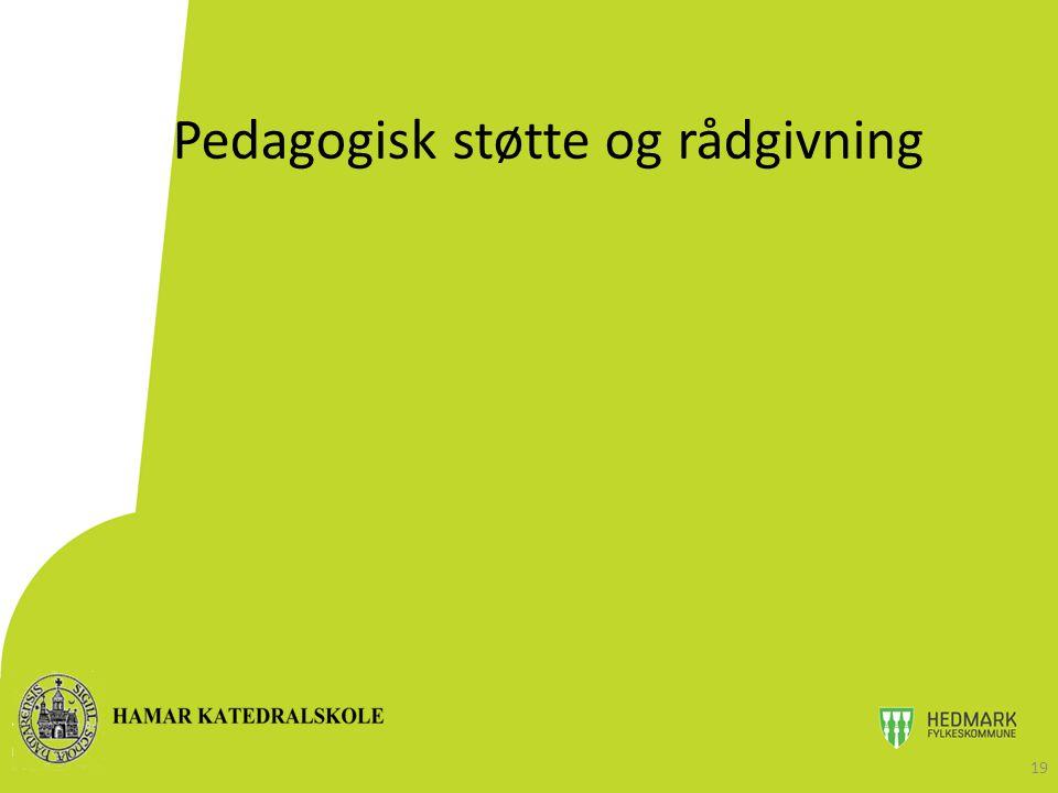 Pedagogisk støtte og rådgivning 19