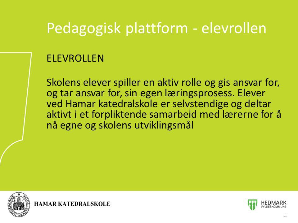 ELEVROLLEN Skolens elever spiller en aktiv rolle og gis ansvar for, og tar ansvar for, sin egen læringsprosess. Elever ved Hamar katedralskole er selv