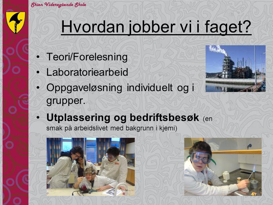 Hvordan jobber vi i faget? Teori/Forelesning Laboratoriearbeid Oppgaveløsning individuelt og i grupper. Utplassering og bedriftsbesøk (en smak på arbe