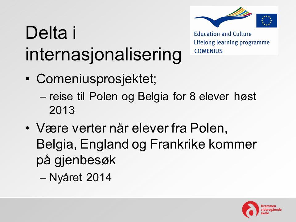 Delta i internasjonalisering Comeniusprosjektet; –reise til Polen og Belgia for 8 elever høst 2013 Være verter når elever fra Polen, Belgia, England og Frankrike kommer på gjenbesøk –Nyåret 2014