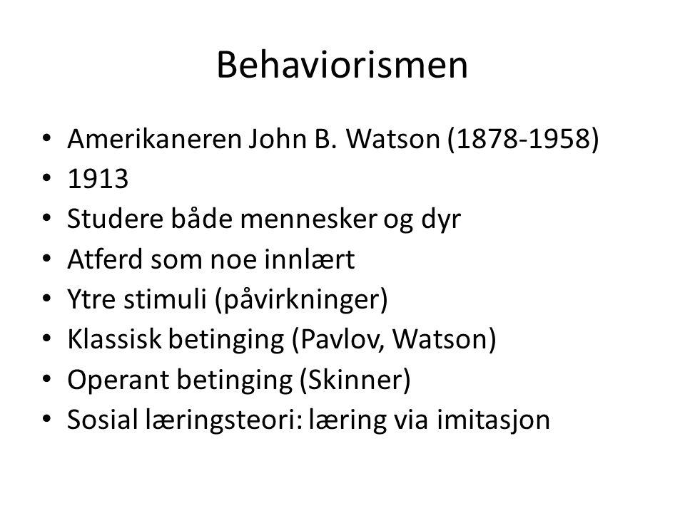 Behaviorismen Amerikaneren John B. Watson (1878-1958) 1913 Studere både mennesker og dyr Atferd som noe innlært Ytre stimuli (påvirkninger) Klassisk b