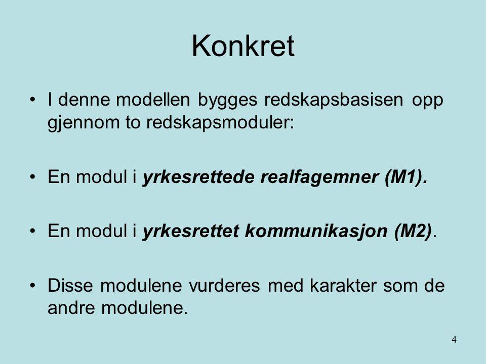 4 Konkret I denne modellen bygges redskapsbasisen opp gjennom to redskapsmoduler: En modul i yrkesrettede realfagemner (M1). En modul i yrkesrettet ko