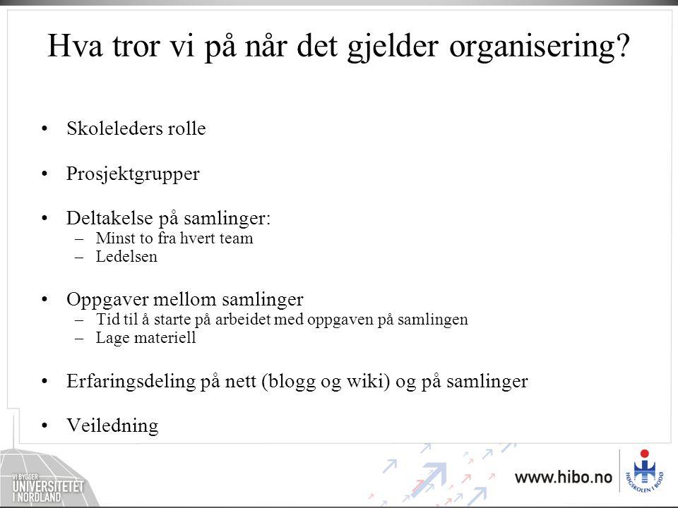 Nils Ole Nilsen førstelektor Høgskolen i Bodø Ny etterutdanning IKT i fagene: Norsk Matematikk Naturfag