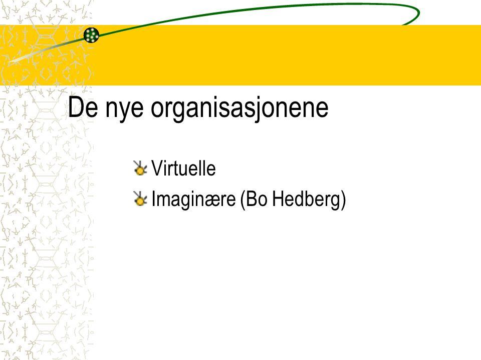 De nye organisasjonene Virtuelle Imaginære (Bo Hedberg)