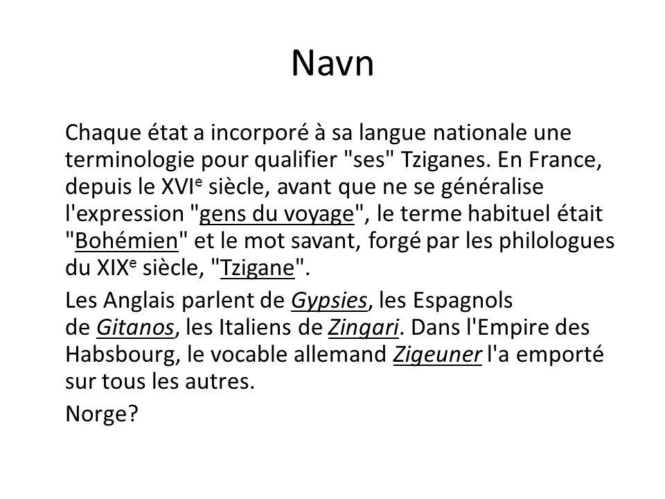 Navn Chaque état a incorporé à sa langue nationale une terminologie pour qualifier ses Tziganes.