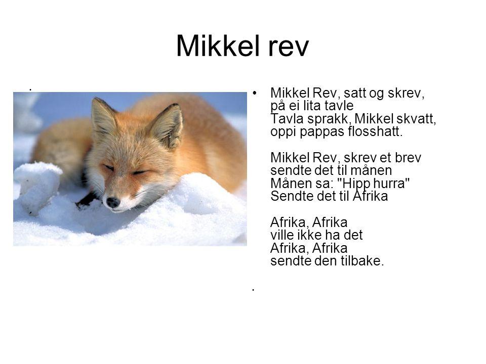 Mikkel rev Mikkel Rev, satt og skrev, på ei lita tavle Tavla sprakk, Mikkel skvatt, oppi pappas flosshatt. Mikkel Rev, skrev et brev sendte det til må