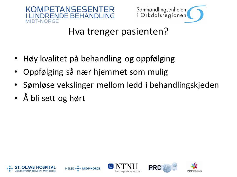 Kreftkoordinator Fyller et behov Støttesamtaler 93 % Økonomisk rådgiving 80 % Henviser videre til fastlege 89 % Henviser til NAV 80 % Petter Lindseth og Frank Herman Hernes: Kreftforeningen.