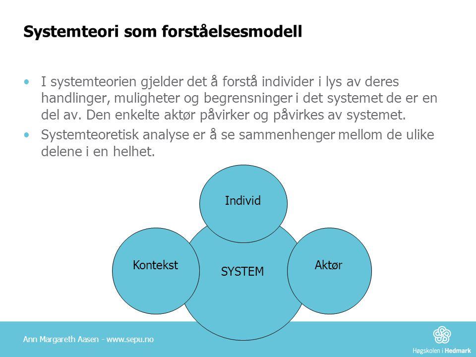 Systemteori som forståelsesmodell I systemteorien gjelder det å forstå individer i lys av deres handlinger, muligheter og begrensninger i det systemet de er en del av.