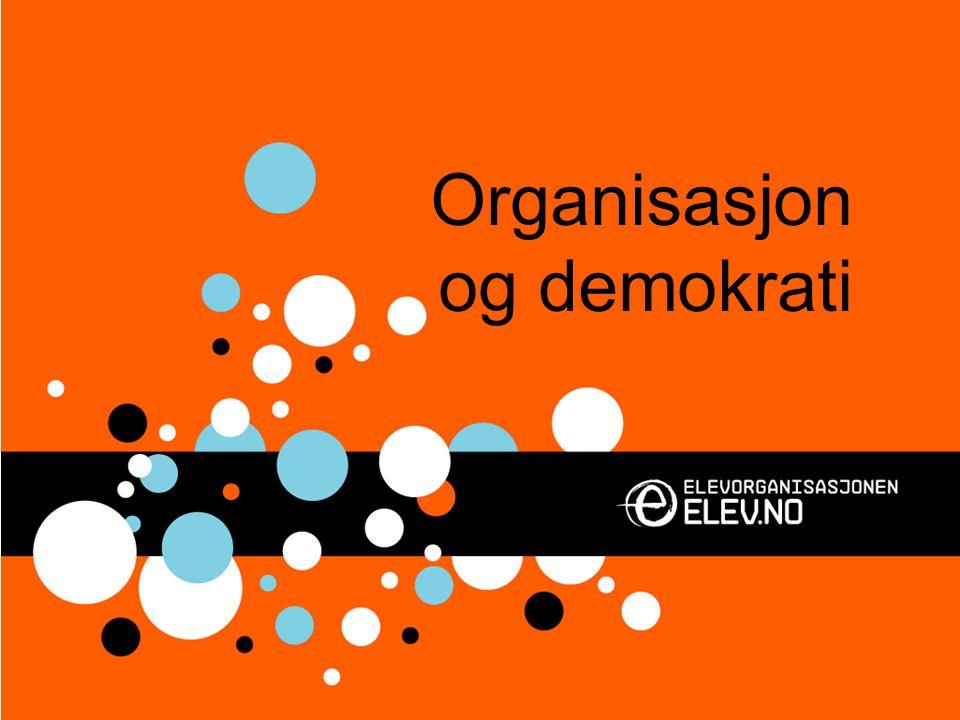 Organisasjon og demokrati