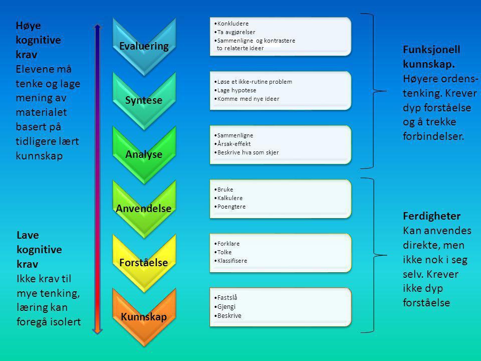 Evaluering Konkludere Ta avgjørelser Sammenligne og kontrastere to relaterte ideer Syntese Løse et ikke-rutine problem Lage hypotese Komme med nye ide