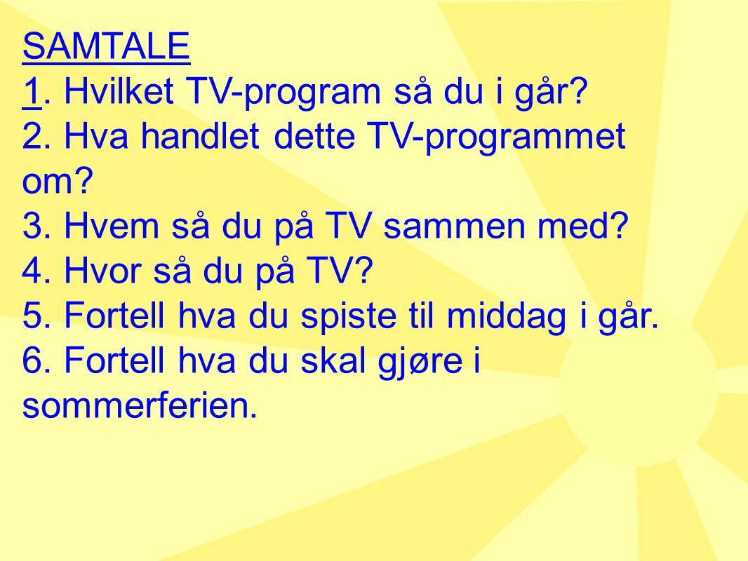 SAMTALE 1.Hvilket TV-program så du i går. 2. Hva handlet dette TV-programmet om.