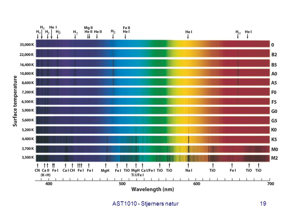 AST1010 - Stjerners natur19