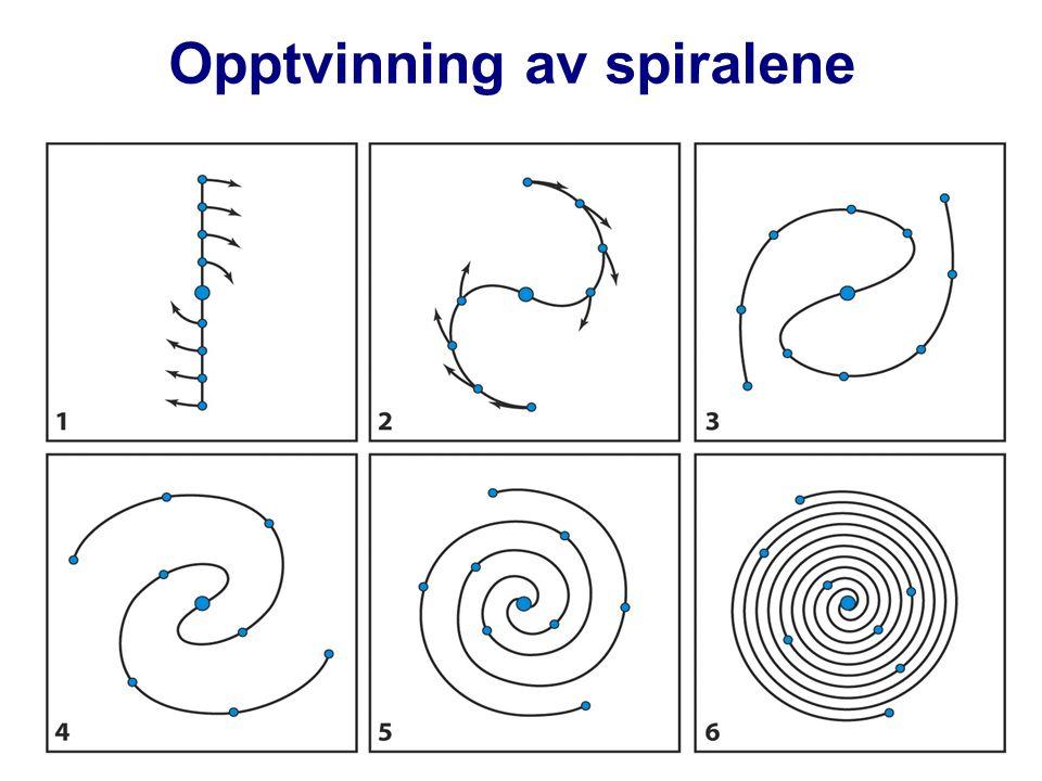 AST1010 - Galakser17 Opptvinning av spiralene