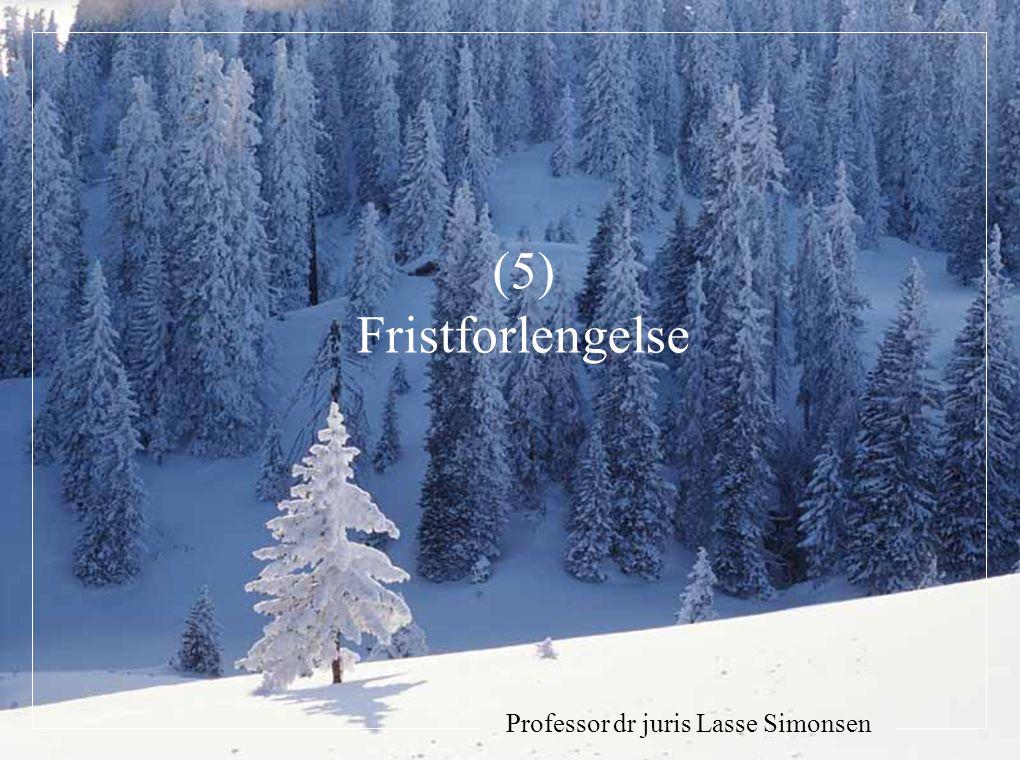 Professor dr juris Lasse Simonsen (5) Fristforlengelse