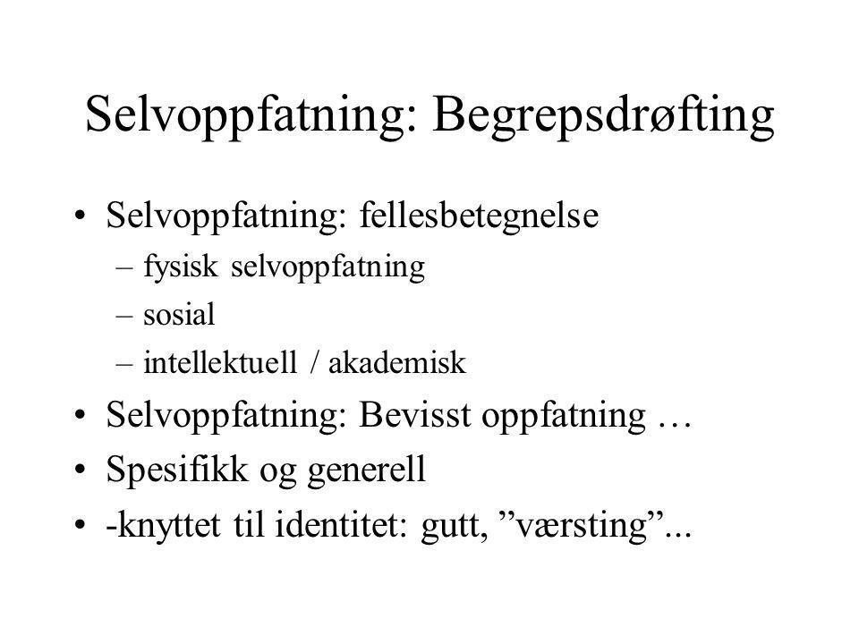 Elevers målorientering: årsak til handlingsmønstrene….