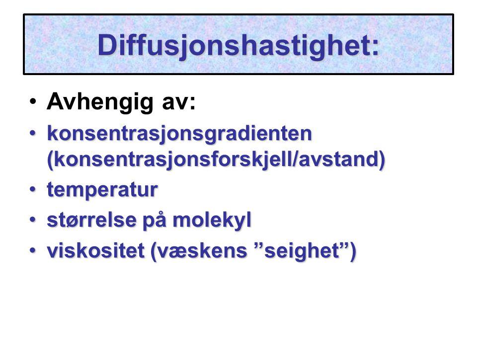 Diffusjonshastighet: Avhengig av: konsentrasjonsgradienten (konsentrasjonsforskjell/avstand)konsentrasjonsgradienten (konsentrasjonsforskjell/avstand)
