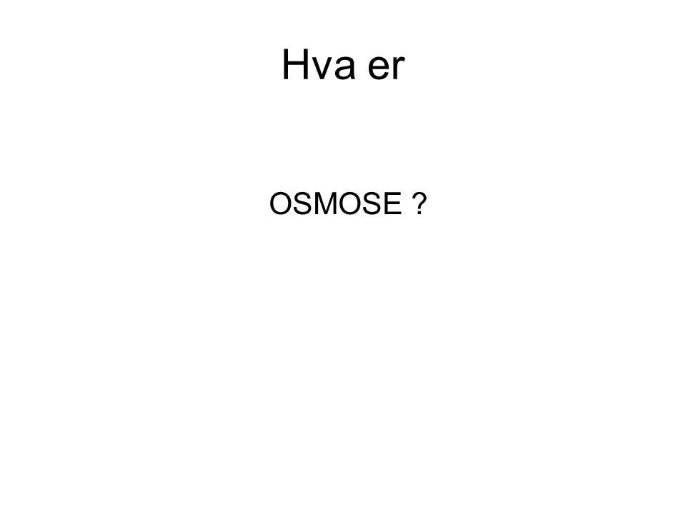 OSMOSE ? Hva er
