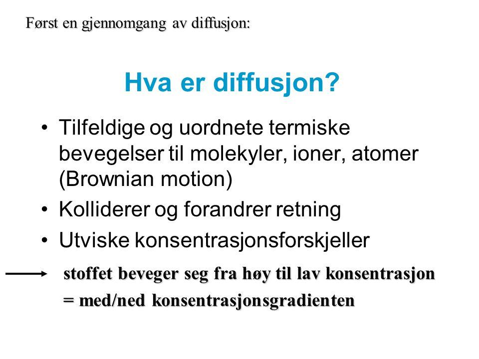 Hva er diffusjon? Tilfeldige og uordnete termiske bevegelser til molekyler, ioner, atomer (Brownian motion) Kolliderer og forandrer retning Utviske ko