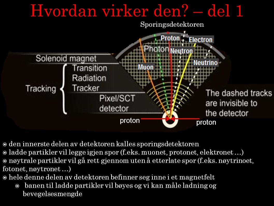 12 Hvordan virker den? – del 1  den innerste delen av detektoren kalles sporingsdetektoren  ladde partikler vil legge igjen spor (f.eks. muonet, pro