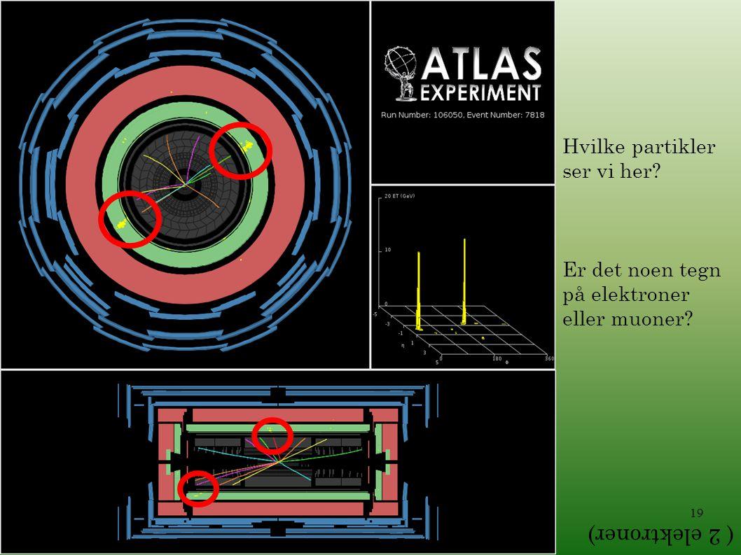 19 Hvilke partikler ser vi her? Er det noen tegn på elektroner eller muoner? ( 2 elektroner)