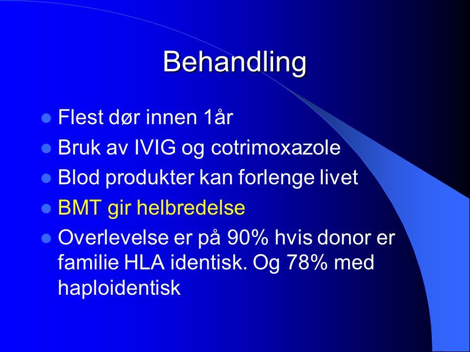 Behandling Flest dør innen 1år Bruk av IVIG og cotrimoxazole Blod produkter kan forlenge livet BMT gir helbredelse Overlevelse er på 90% hvis donor er
