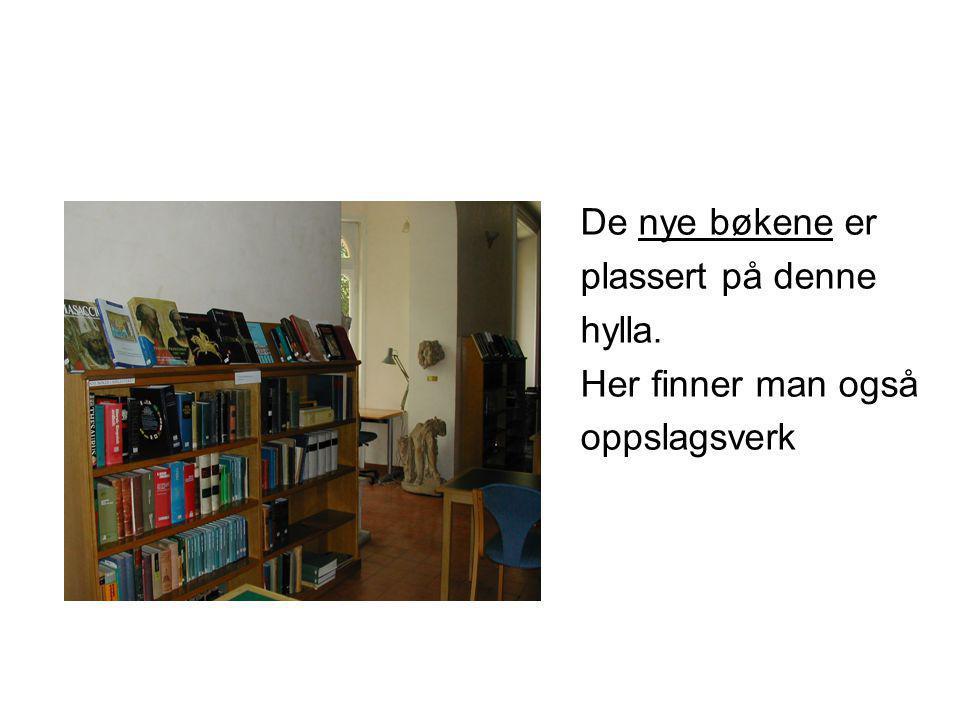 De nye bøkene er plassert på denne hylla. Her finner man også oppslagsverk