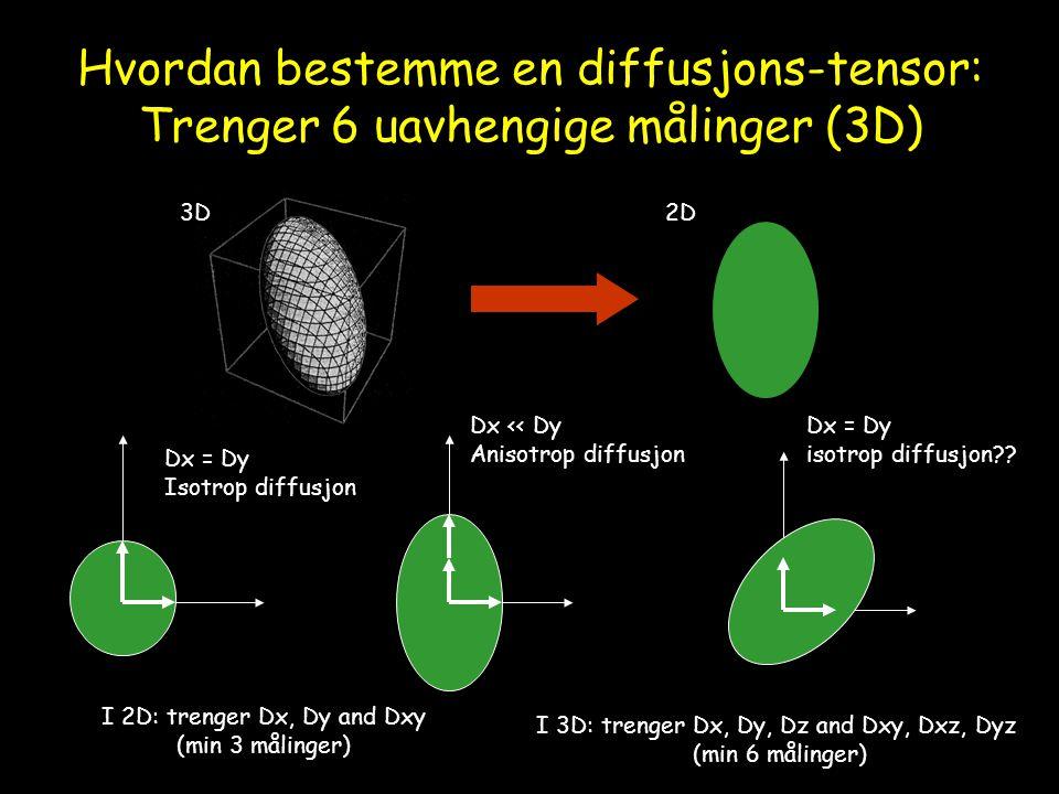 Hvordan bestemme en diffusjons-tensor: Trenger 6 uavhengige målinger (3D) 2D3D Dx = Dy Isotrop diffusjon Dx << Dy Anisotrop diffusjon Dx = Dy isotrop