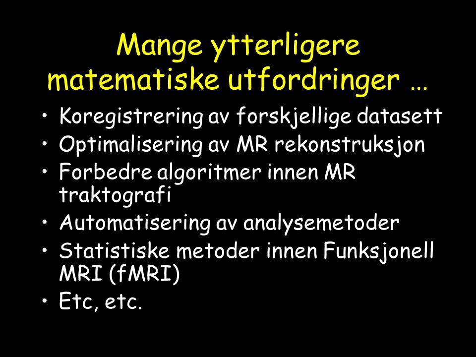 Mange ytterligere matematiske utfordringer … Koregistrering av forskjellige datasett Optimalisering av MR rekonstruksjon Forbedre algoritmer innen MR