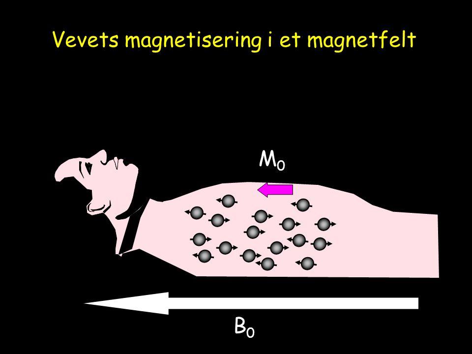 Mxy RF-puls M tippes vinkelrett på B 0 – kan nå registreres med RF-spole Vevets magnetisering i et magnetfelt
